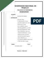 INFORME DE MICROBIOLOGIA (1).docx