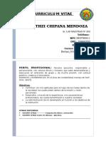 Currculum Model Bethzi Chipana Mendoza