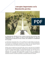 Etapas y Conceptos Importantes en La Alimentación Porcina