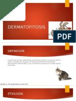 11. Dermatofitos