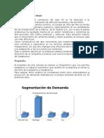 95214979-Castillo.docx