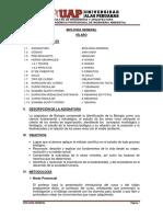 240424201.pdf