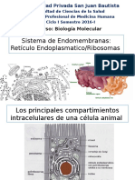 Capitulo Sistema de Endomembranas