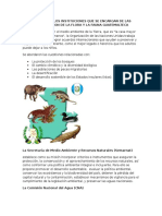 Nombres de Los Instituciones Que Se Encargan de Las Conservacion de La Flora y La Fauna Guatemalteca