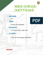 epidemologia informe1.docx