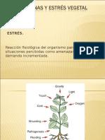 7. Proteinas_HSP_y_enzimas.ppt