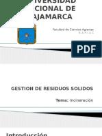 GRS - Incineracion.pptx