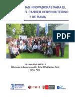 Informe Reunion CCU Peru Abril 2013
