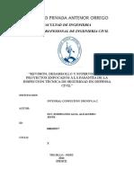 Informe de practicas pre profesionales - UPAO