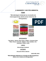 Informe Columna de Winogradsky-final