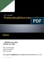 protocolo y medidas resumen