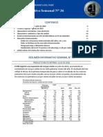 Resumen Informativo 36 2016