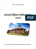 Conceperea Si Promovarea Unui Perelinaj in Bucovina