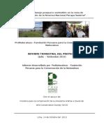 2° Informe Trimestral Py MAPE Puinahua WCS Julio-Setiembre 13