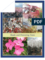 Shade & Flowering Trees - Leo Gentry Nursery