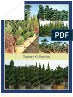 Topiary Collection - Leo Gentry Nursery
