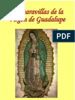 30726086 Las Mar a Villas de La Virgen de Guadalupe