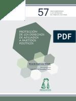 57_proteccionderechospoliticos
