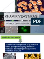 2. Khamir