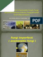5. Fungi Imperfecti (Anamorphic Fungi), Fungi Penyebab