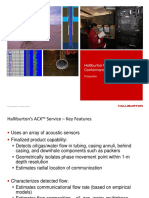 07 Halliburton ACX