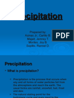 Precipitation.pptx