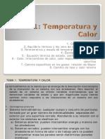 TEMA 1 Temperatura y Calor