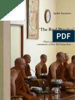 The Real Practice Ajahn Jayasaro