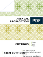 4 0 asexual propagation
