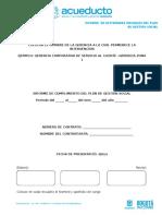 NS-038 Anexo D.3. Criterios Informe Mensual Plan de Gestión Social