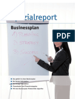 spezialreport_businessplan.pdf