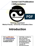 K7- Control of Normal Cell Poliferation And Difrentiation