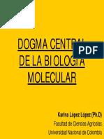 Dogma Central de La Biologia Molecular( Karina Lopez)