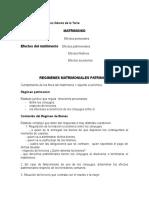 REGIMENES_MATRIMONIALES_PATRIMONIALES