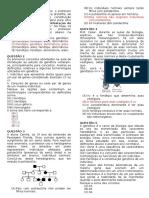 Biologia - 3º ano - 1º Período.docx