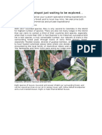 Advert for Birding}