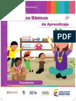 pi DBA Transicio¦ün_FINAL (1).pdf
