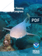 shark-finning-report-2015