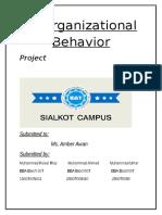 OB Project