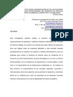 la estrucura organizacional.pdf