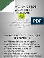 Interaccion de Los Toxicos en El Organismo Diapositivas (2)