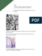 Funciones de Las Líneas y Sus Figuras