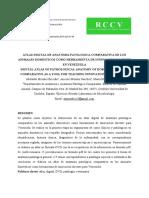 47025-77267-2-PB.pdf