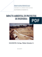 CURSO-Impacto Ambiental Ciclo 2017-I