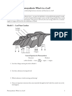 2 photosynthesis-whats in a leaf-s