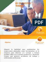 Inspecciones de Puestos de Trabajo Positiva Diapositivas