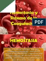 HEMOSTASIA.ppt