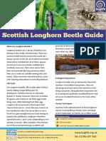 Longhorn Beetle Guide
