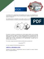 Los Silicatos Tetrologia 07