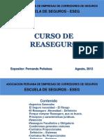 Curso Reaseguro ESEG Agosto,2012.pdf